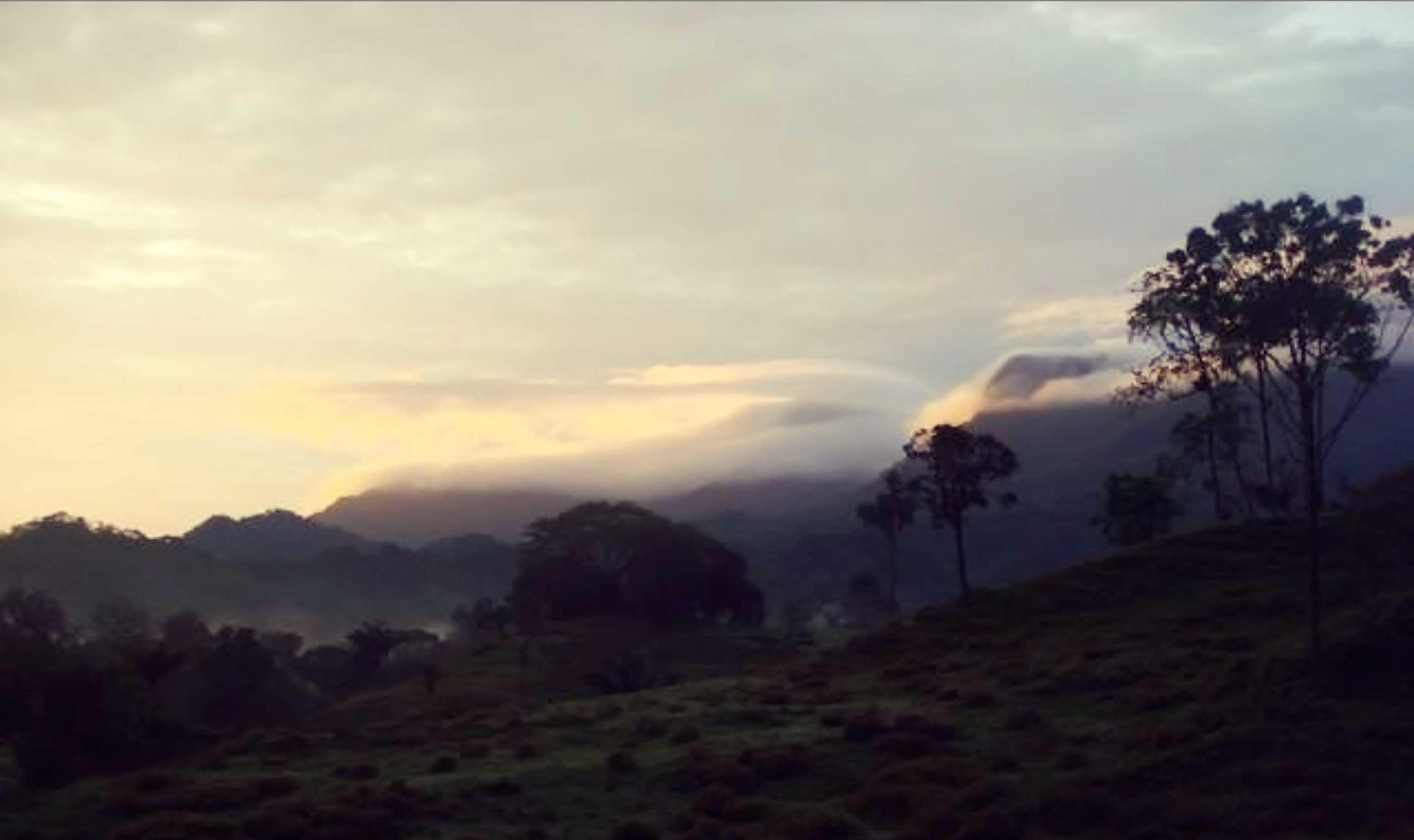 Panama Nature Photo